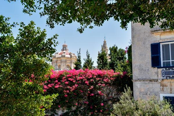 kleurrijke bloemen met kathedraal van st paul in achtergrond mdina malta