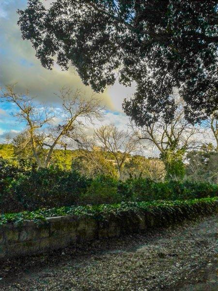 weer malta maart 2016 winter 2015 2016 ochtendgloren buskett januari 2016