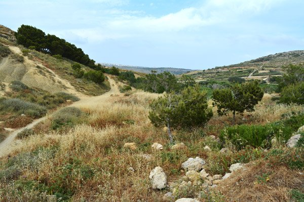 prachtige natuur wardija ridge noorden van malta