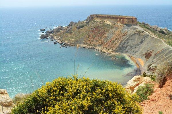 bloemen en kleiheuvels nabij ghajn tuffieha bay noorden van malta