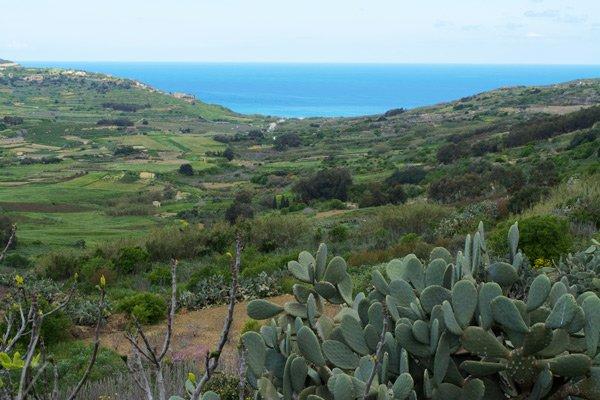 groen landschap gozo eiland malta