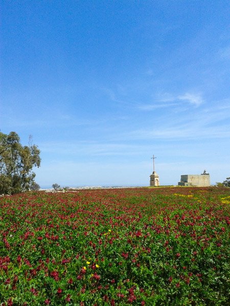 klimaat malta april lente landbouw laferla cross kruis girgenti siggiewi