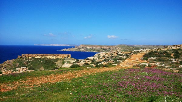 nature radisson blu resort spa malta golden sands